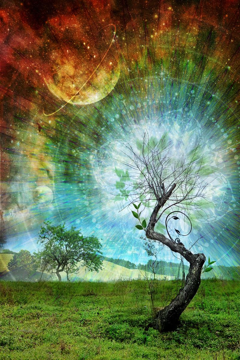 Веда Родных деревьев
