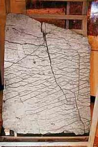 Рельефная карта Земли составлена 120 миллионов лет назад!