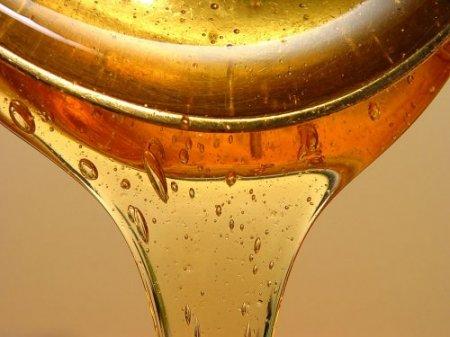 Тайна старинного меда или чем питались наши предки