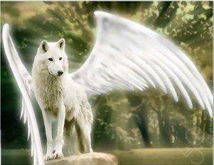 Симураны - Крылатые волки