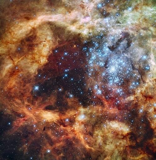 скачать звезды и земли программа основных расчетов - фото 7