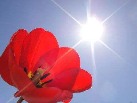 Ярило-Солнце восстанавливает зрение