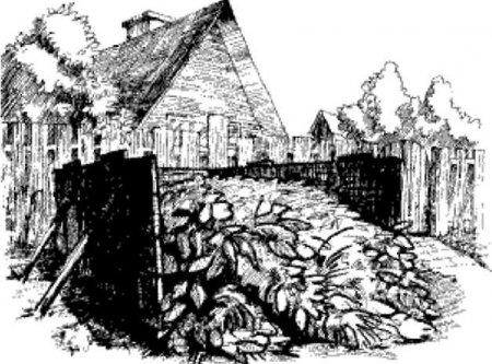 Н.И.Курдюмов. 12 книг для огородников и садоводов + Зепп Хольцер. Аграрий-революционер + Дом из Самана.