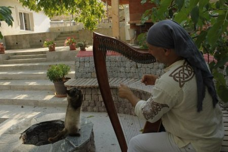 существует универсальная связь между духовностью, музыкой и врачеванием