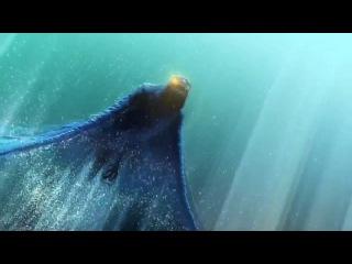 Прекрасный ролик Финист - Ясный Сокол (01:18)