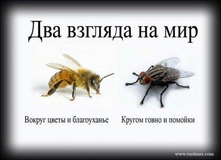 Казаки-Енисейцы Атамана Вячеслава Кривоногова возрождают деревню