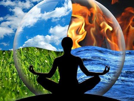 Интуитивное ЗНАНИЕ высших законов, присущее каждому живому существу, заложено в его ЧУВСТВАХ