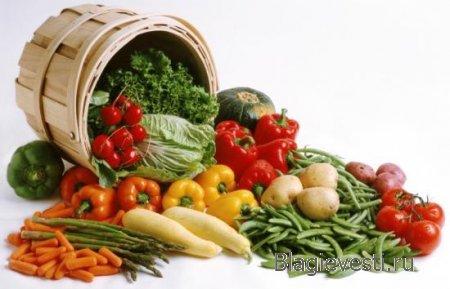 Президенту России Владимиру Владимировичу Путину: Отменить государственную регистрацию ГМО