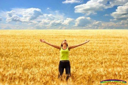 Как жить счастливо? Где? С кем?