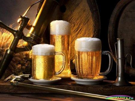 Самое главное о пиве.