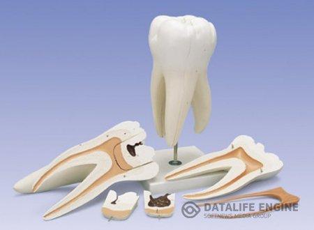 Сенсационная методика наращивания и лечения зубов.