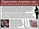 ЧИТАТЬ ВСЕМ! Причина появления паразитов в наших телах.