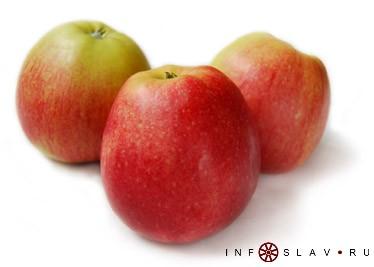 Правильное здоровое питание | Сыромоноедение