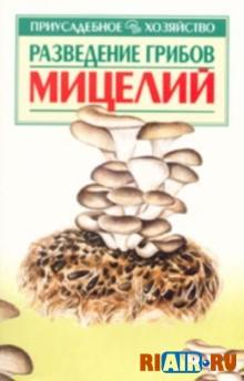 Вы любите грибы и жалеете, что в лесах их становится