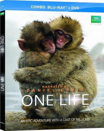 «Одна Жизнь» - это праздник самых блестящих и захватывающих историй выживания в животном царстве.