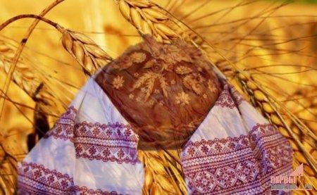 ХЛЕБ ВСЕМУ ГОЛОВА!!!Бережное отношение к хлебу