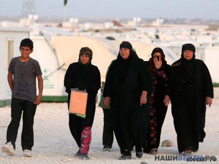 » США вложат еще 54 миллиона долларов в войну в Сир