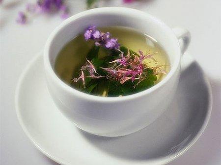 Иван-чай фрагмент программы.