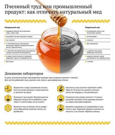 Как выбрать мед.