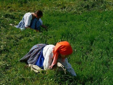 Секреты крестьянского льна.Ряд этнографических