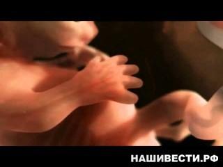 Медицина пишет:Как происходит зачатие ребёнка