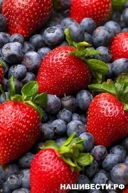 #Питание #prosto_o_zПочему ягоды следует