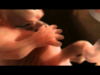 Как происходит зачатие ребёнка. Смотрите фильм.