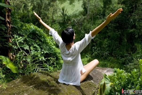 Йога: здоровье, молодость и красота