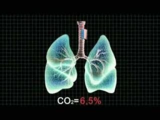 Пять тайн дыхания (09:17)