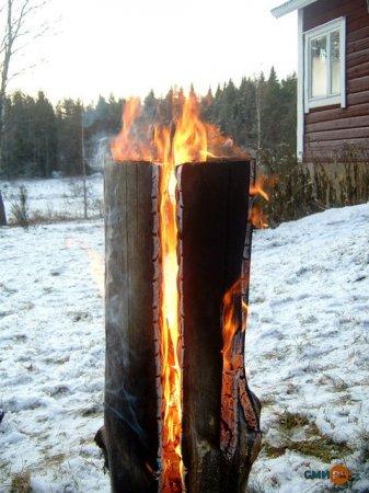 «Таежная свеча» - одна из разновидностей дровяных