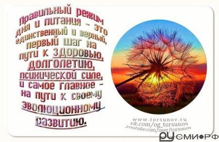 Торсунов. Время и режим дня.
