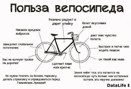 Польза велосипеда.