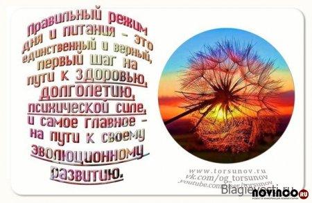 Аудиозапись: Торсунов - Время и режим дня (02:01: