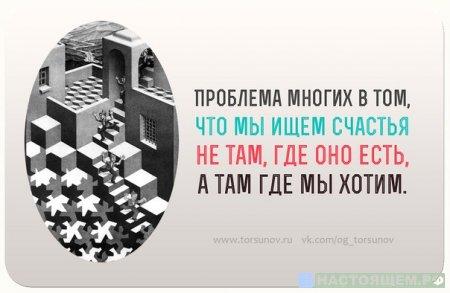 ТОРСУНОВ - проблема многих...