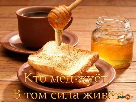 Почему мёд полезен.