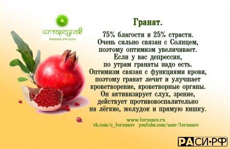 Влияние плодов на организм (краткие описания)