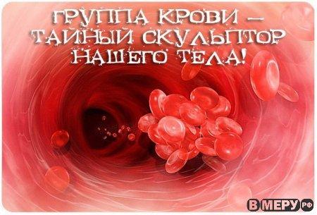 Группа крови — тайный скульптор.