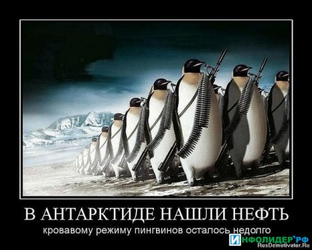Режим пингвинов.