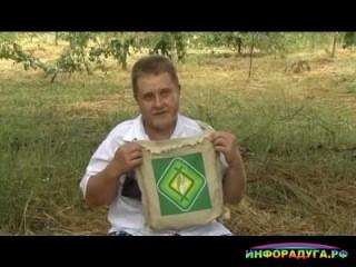 Н.И. Курдюмов - Уроки садоводства.