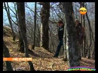 Ведагоръ на Рен ТВ