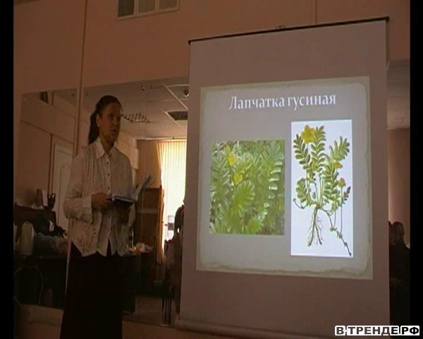 Лекция по лекарственным травам
