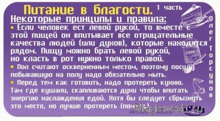 Аудиозапись: О. Г. Торсунов о Питании с позиции Вед.