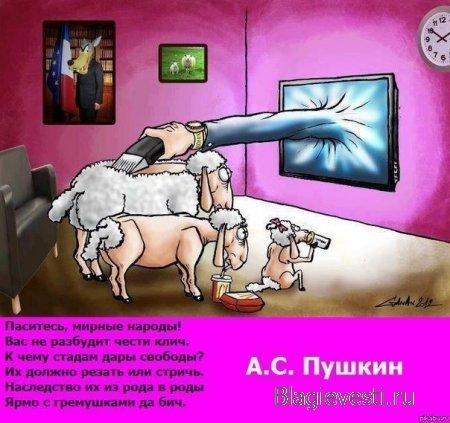 ТВ против народа