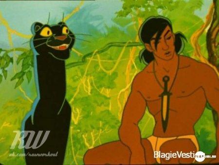 Два Маугли. Два мира.