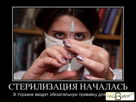 СТЕРИЛИЗАЦИЯ НАЧАЛАСЬ.