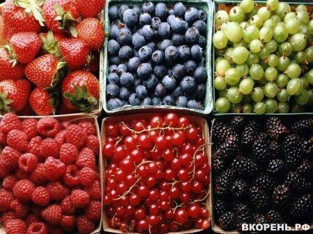 Ох уж эти ягодки!