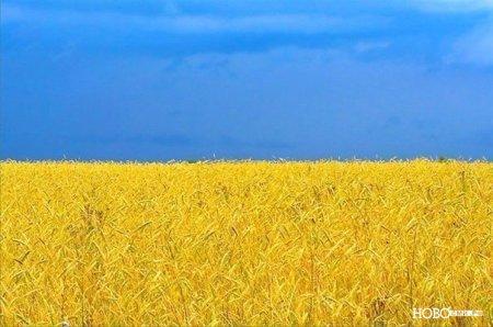 Интересные факты об Украине.