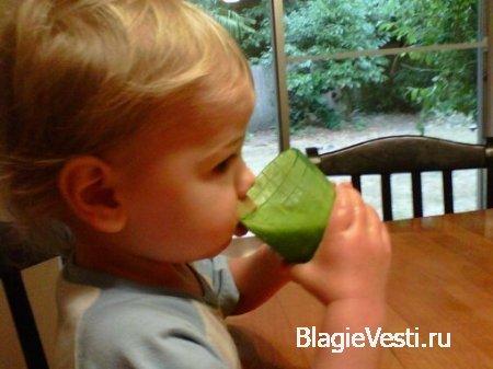 Зеленый фруктовый коктейль. Или как поднять гемоглабин у малыша. • Жизнь без химикатов и обработки!