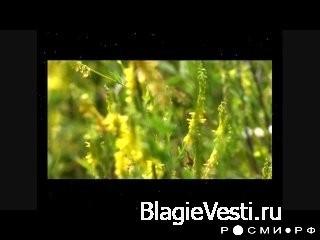 Азбучные истины. [HD-720p] (09:29)Ссылка: Русская Азбука