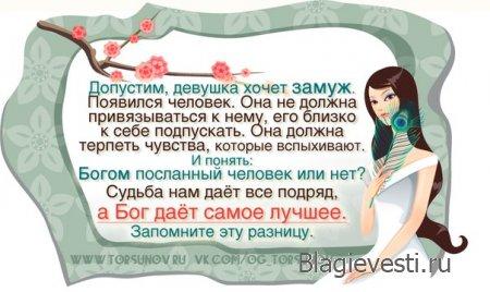 Законы Счастливой жизни | Торсунов О.Г.